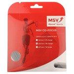 naciąg tenisowy MSV CO.- FOCUS 12M BLACK