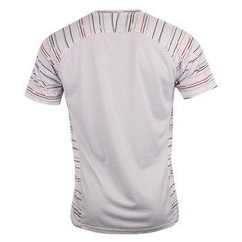 koszulka tenisowa męska ASICS CLUB GRAPHIC SHORTSLEEVE TEE / 121690-0152